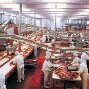 Системы смазки для производств пищевых продуктов